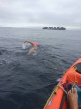 Catalina Channel Swim
