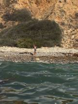 Catalina Channel Swim - Finish