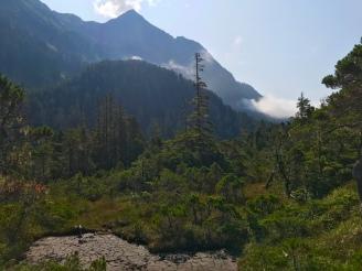 Herring Cove Trail_017
