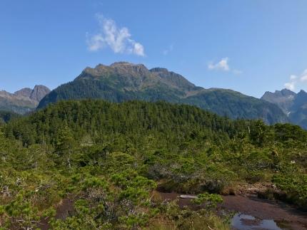 Herring Cove Trail_021
